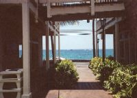 The terrace view of the beach