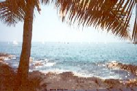 The beach from the convention hotel in Kona