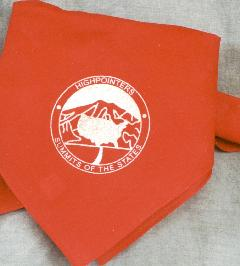 Bandana, red with Club logo in silver
